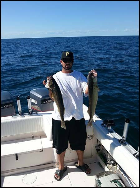 lake erie walleye picture